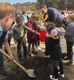 Праздник по высадке деревьев состоялся в школе поселка Иноземцево