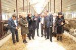 Николаев: Поддержка АПК дает результаты